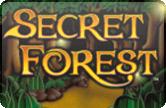 Игровые автоматы Вулкан на деньги Secret Forest
