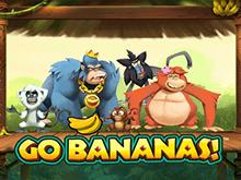 В клубе Вулкан Вперед Бананы!