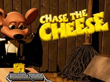 Одержите победу и получите призы в игровом автомате Преследуй Сыр